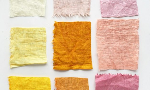 The Ancient Craft of Natural Dyes 21 – 22 July 2018 The Prince's Foundation School of Traditional Arts